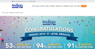 Indigo Centre for Economics Learning